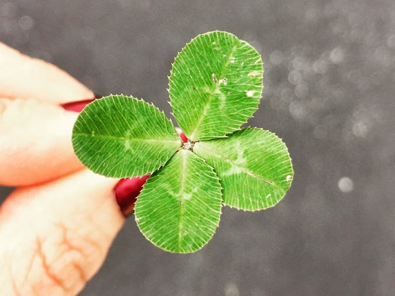 Luck is the reason I'm successful and you're not, but not in the way you think